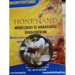 TO82 Akácvirág-méhecskés lapka